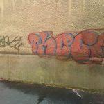grafity-3-150x150
